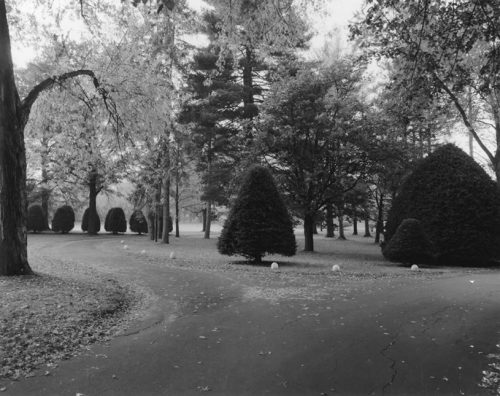 "Childs Park, Northampton MA Archival Inkjet Print 17 X 22"", Edition Of 25 (other Sizes Available)"
