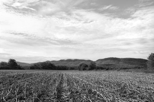 """Clouds, Mountains, Corn Archival Inkjet Print 17 X 22"""", Edition Of 25 (other Sizes Available)"""