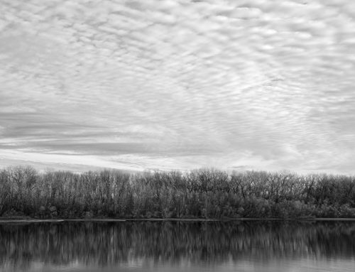 """Clouds, Trees, River Archival Inkjet Print 17 X 22"""", Edition Of 25 (other Sizes Available)"""