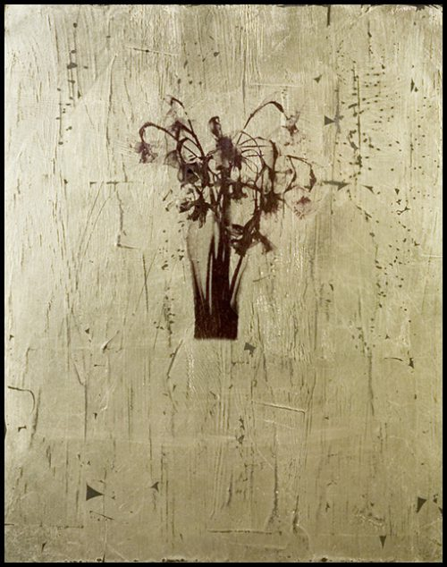Dead Flowers Polaroid Emulsion Over Gold Leaf And Clay On Board, 10 X 8""