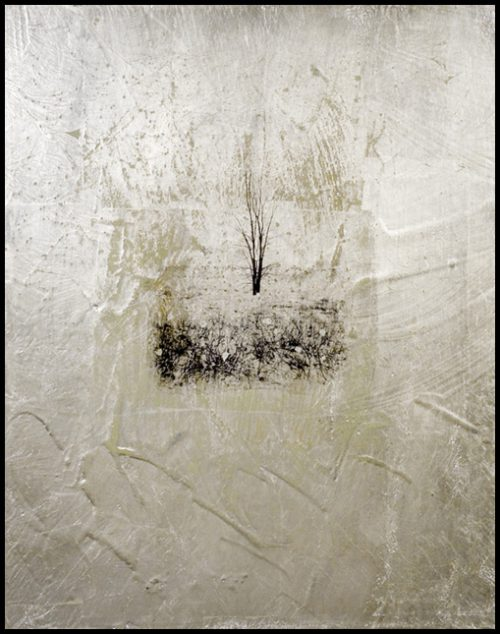 Dead Tree Polaroid Emulsion Over Gold Leaf And Clay On Board, 10 X 8""