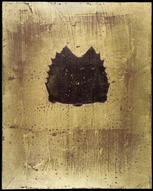 Horseshoe Crab 2 Polaroid Emulsion Over Gold Leaf And Clay On Board, 10 X 8""