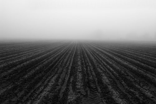 """Plowed Field And Fog Archival Inkjet Print 17 X 22"""", Edition Of 25 (other Sizes Available)"""