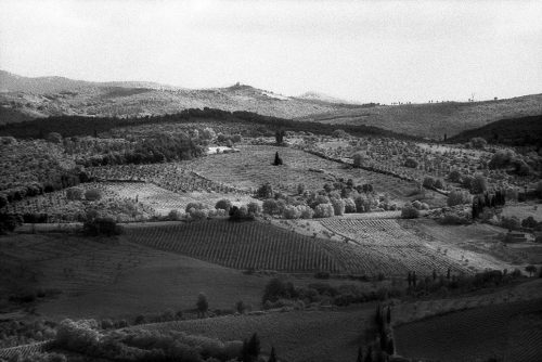 "Tuscany, Italy Archival Inkjet Print 17 X 22"", Edition Of 25 (other Sizes Available)"